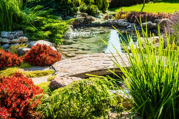 Colorful Landscaping with small pond and stone walkway